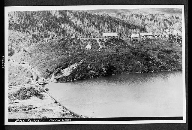 The holding pond directly below Wible's mining camp. Note the Lower Wible Ditch at the far left.